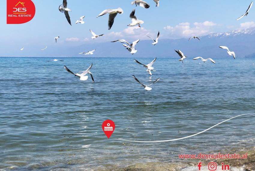 Qyteti i Pogradecit shtrihet në brigjet e Liqenit të Pogradecit