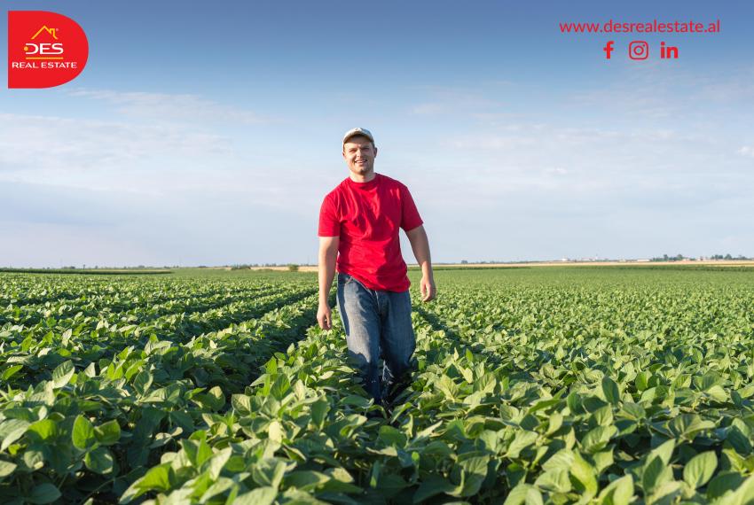 Për tokën bujqësore që është në përdorim nga fermerët